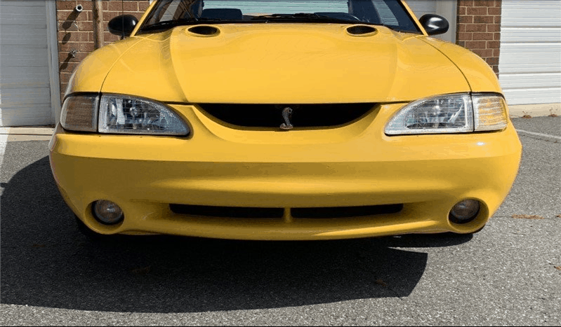 1998 Ford Mustang SVT Cobra for sale 2